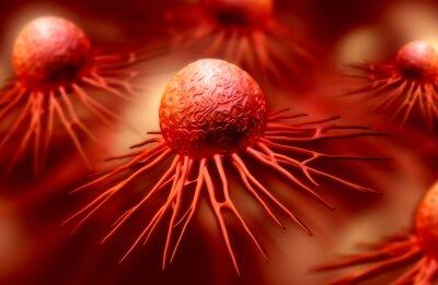 Clovis Oncology Rubraca EC approval